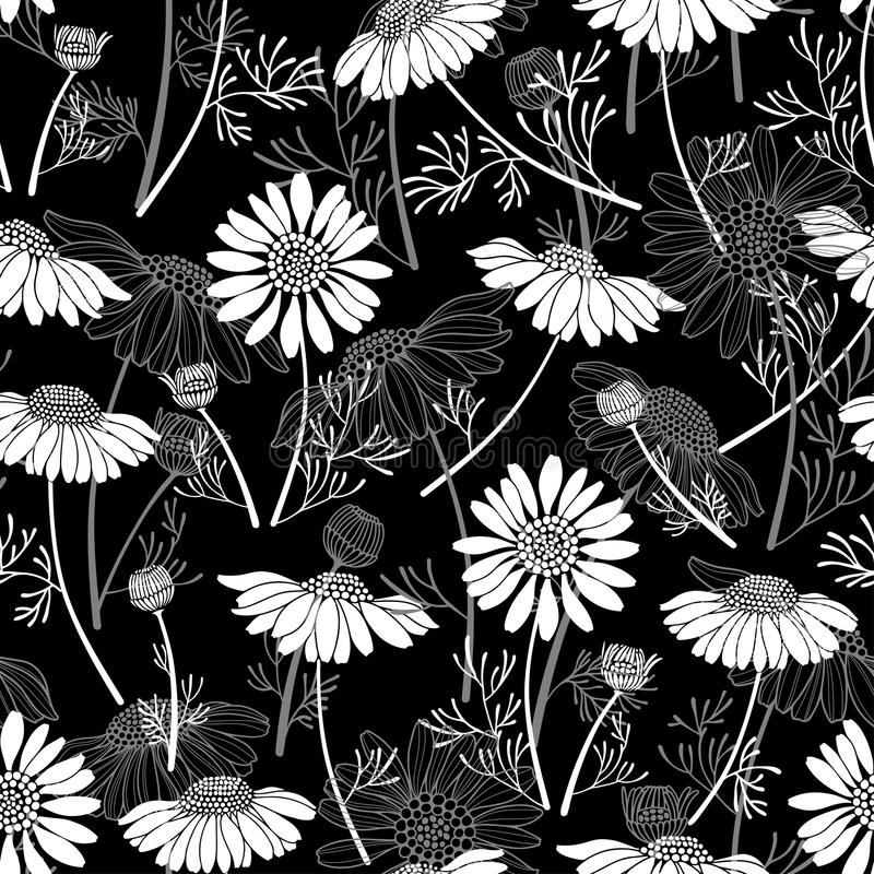Seamless pattern with chamomiles on black background. Han. Floral seamless background with daisies. Vector illustration stock illustration