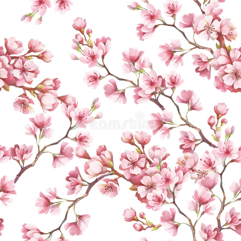 Seamless pattern with cherry blossoms. Watercolor illustration. stock illustration