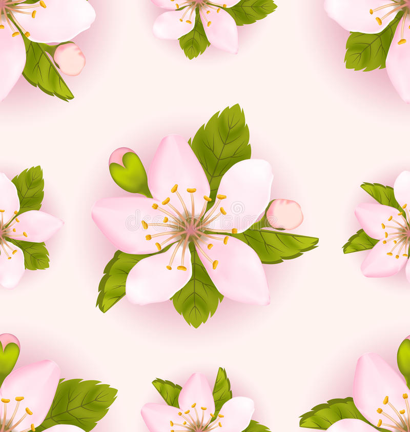Seamless Pattern Cherry Flowers, Repeating Romantic Backdrop vector illustration