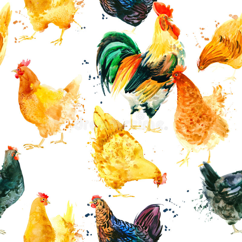 Seamless pattern with Chicken and Rooster. vector illustration