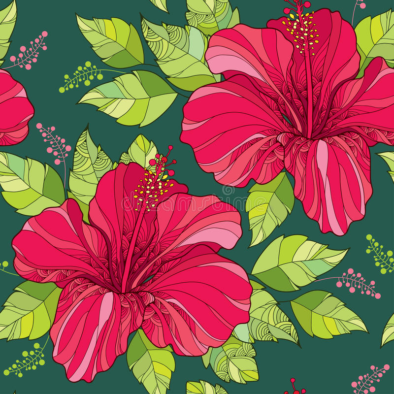 Seamless pattern with Chinese Hibiscus flower in red and green ornate leaves on the dark green background vector illustration