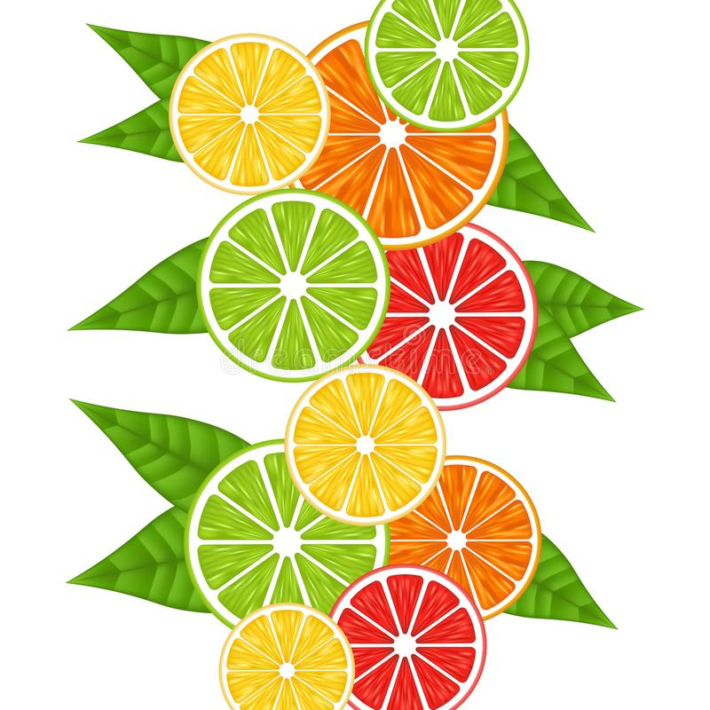 Seamless pattern with citrus fruits slices. Mix of lemon lime grapefruit and orange. Vector illustration icon royalty free illustration
