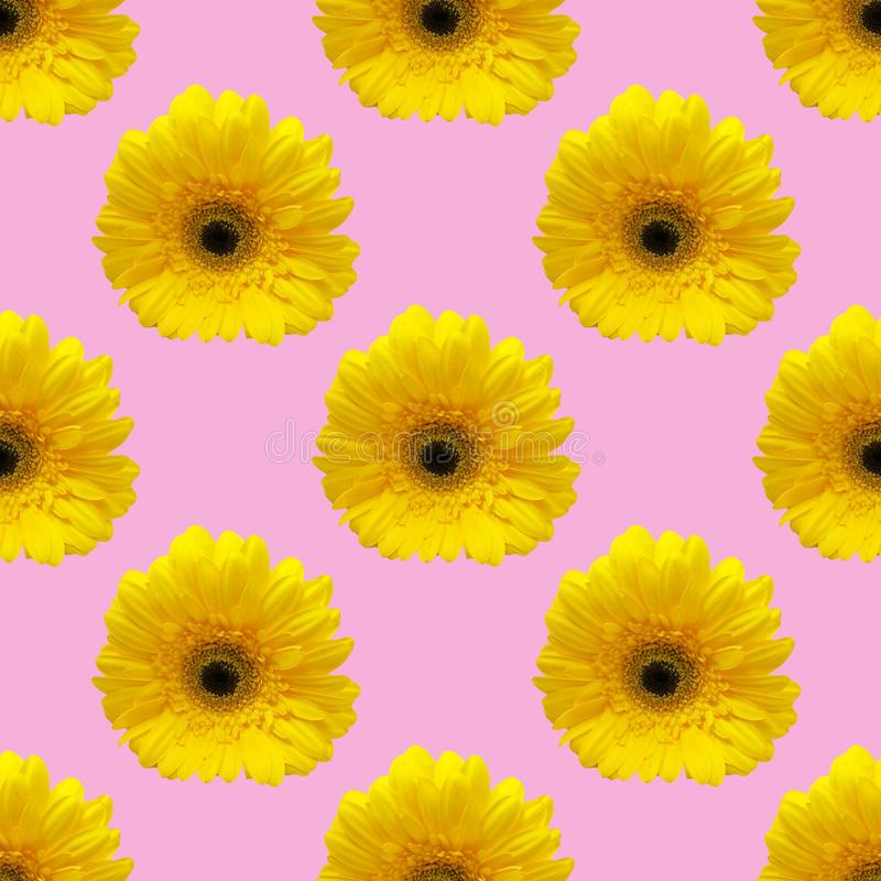 Seamless pattern collage from photo of yellow gerbera. regular repeat flowers background stock photo