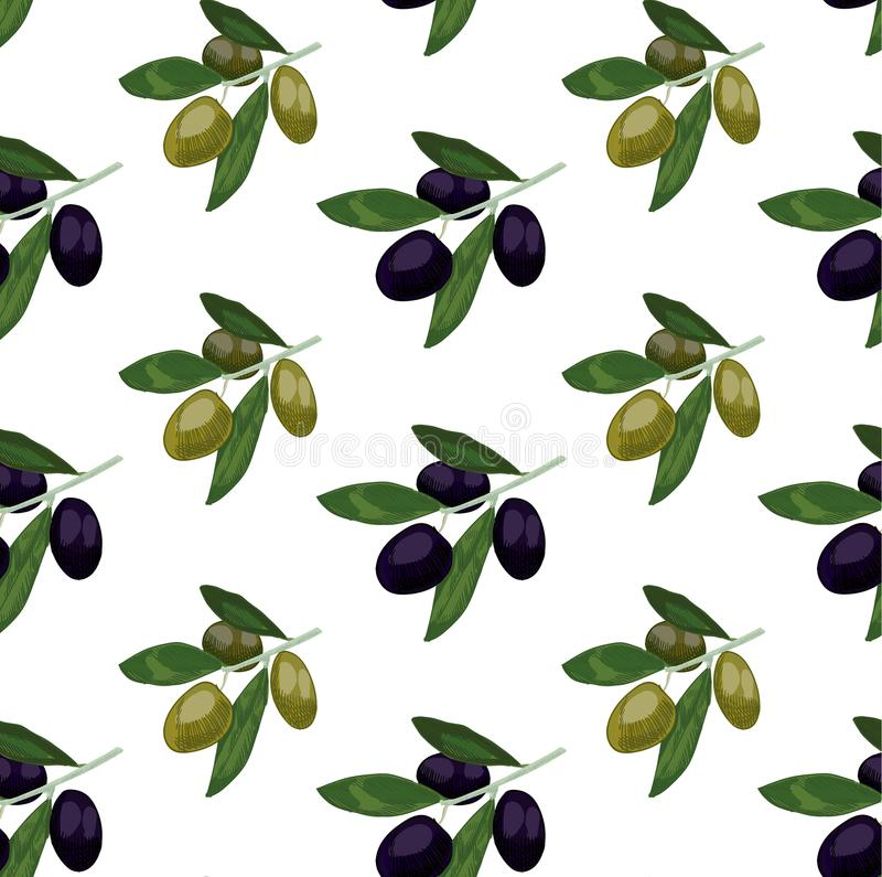 Seamless pattern with colored olives. Hand drawn olive branch. VECTOR illustration, green and black olives. vector illustration