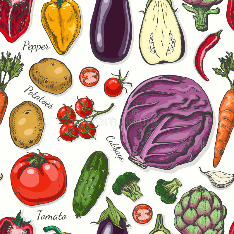 Seamless pattern with colored vegetables. Vector illustration for your design royalty free illustration