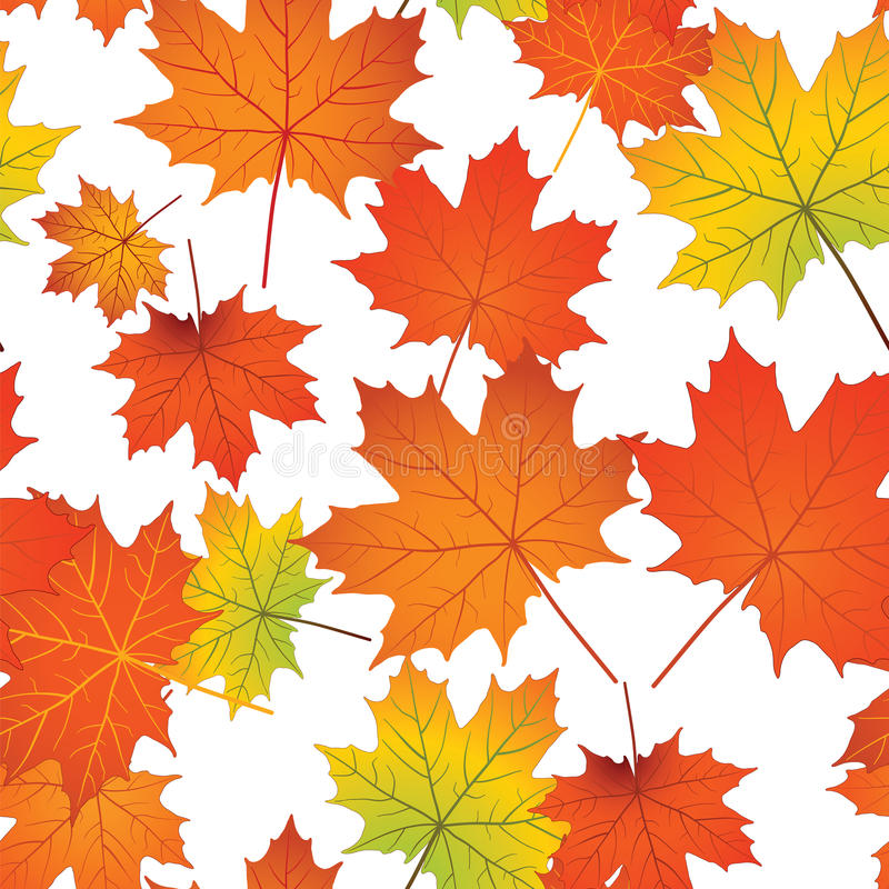 Seamless pattern with colorful maple leaves royalty free stock photography