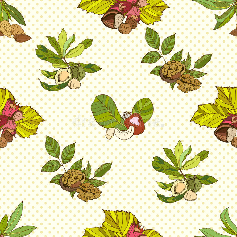 Seamless pattern composed of different nuts with. Leaves, colored royalty free illustration