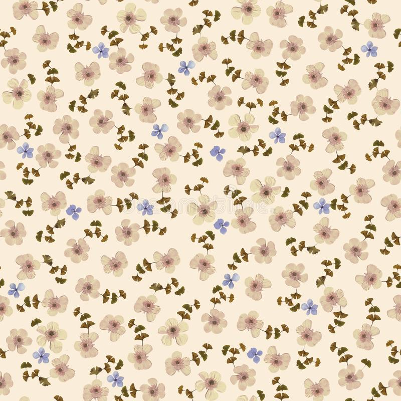 Seamless pattern consisting of pressed flowers different sizes royalty free stock photography