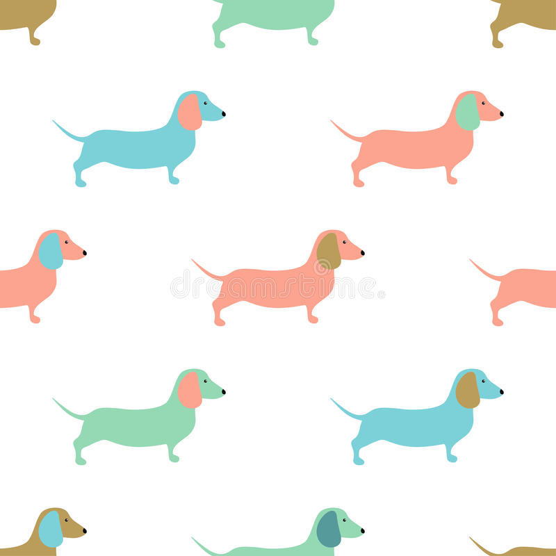 Seamless pattern with cute dachshound dogs. Vector illustration. vector illustration