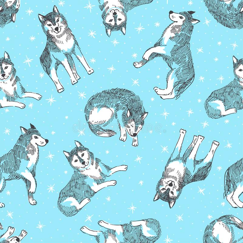 Seamless pattern with cute husky with snowflakes. Vector animal background. Design for chinese new year of dog. royalty free illustration
