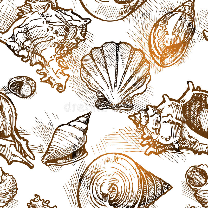 Seamless pattern from of different shapes shell sketches stock illustration
