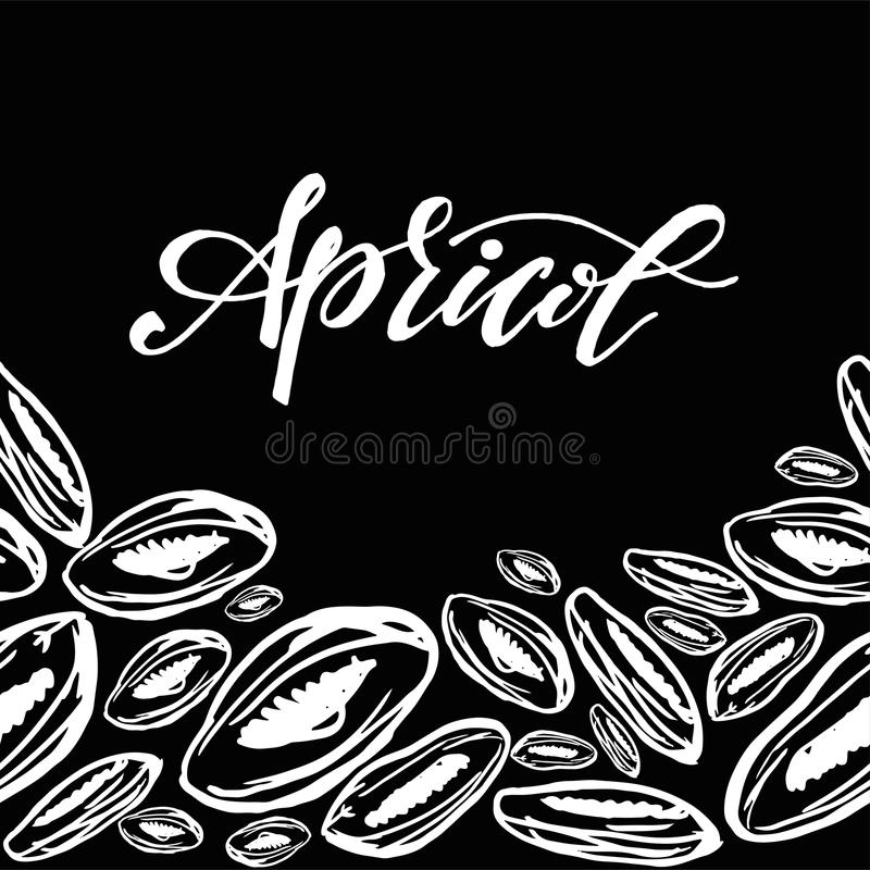 Dried apricots pattern on black background. Seamless pattern with dried apricots on black background. Cute doodle illustration vector illustration