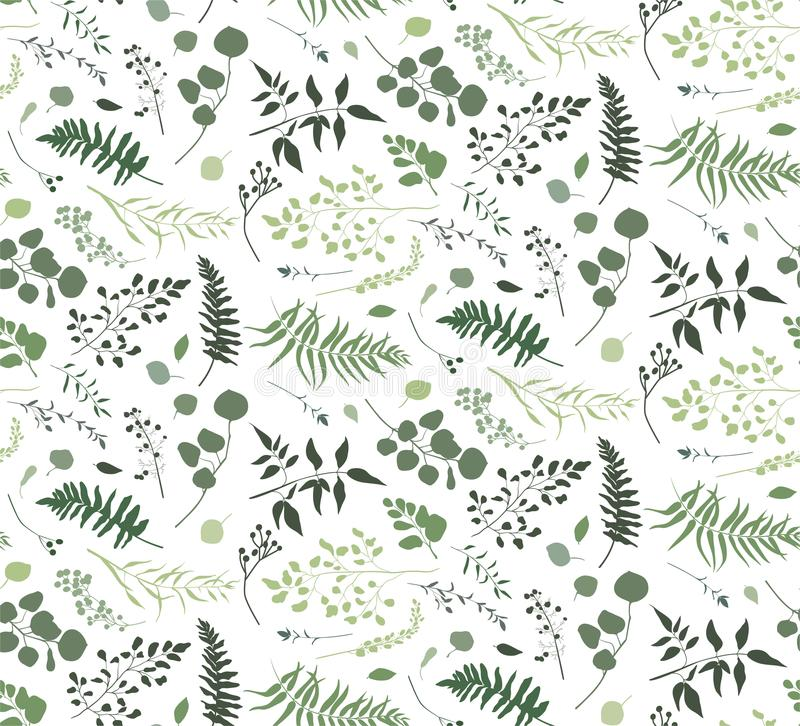 Seamless pattern of Eucalyptus palm fern different tree, foliage. Natural branches, green leaves, herbs, berries tropical heel hand drawn silhouette watercolor royalty free illustration