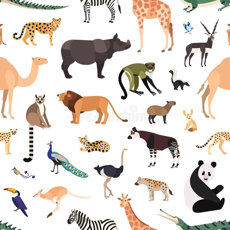 Seamless pattern with exotic animals and birds on white background. Backdrop with wild fauna of African tropical jungle royalty free illustration