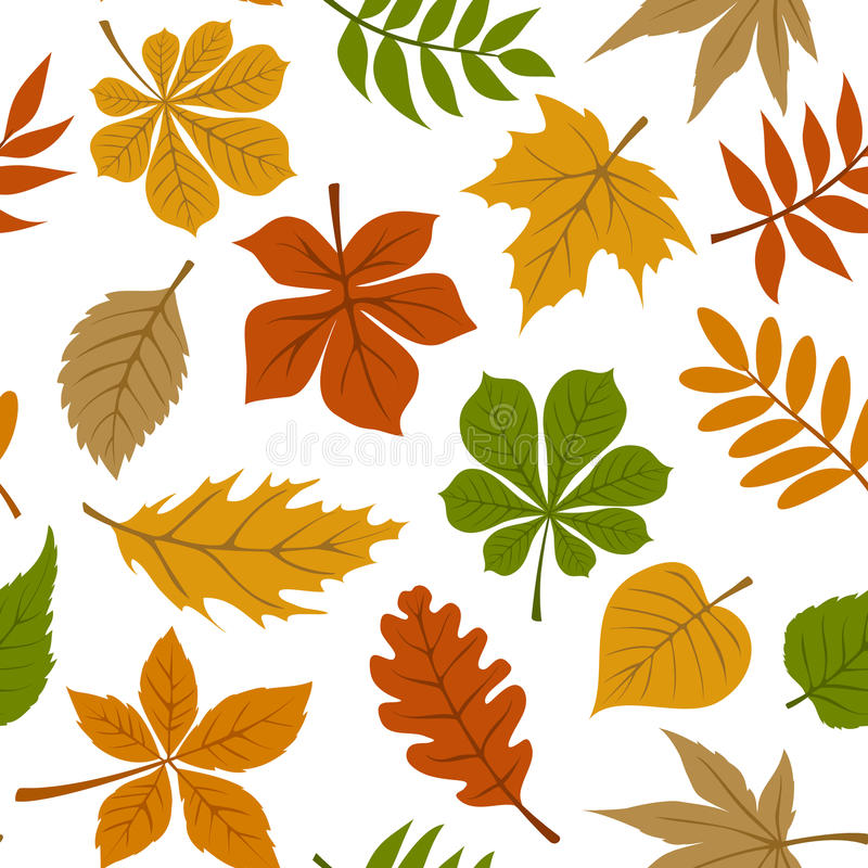 Seamless pattern with fall autumn leaves on white. Background royalty free illustration