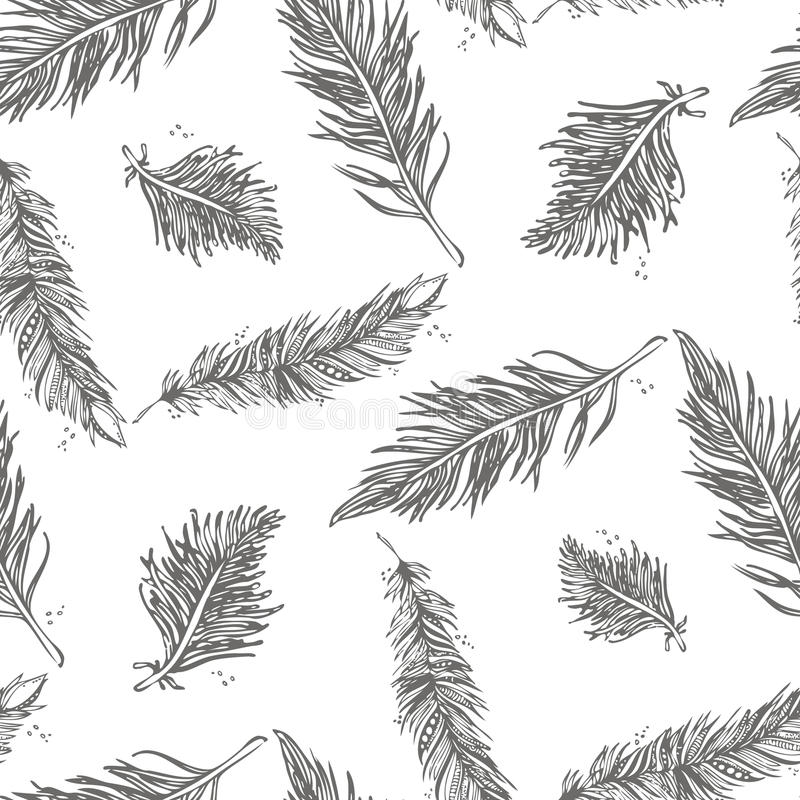 Seamless Pattern with Feathers gray on a white background. vector illustration