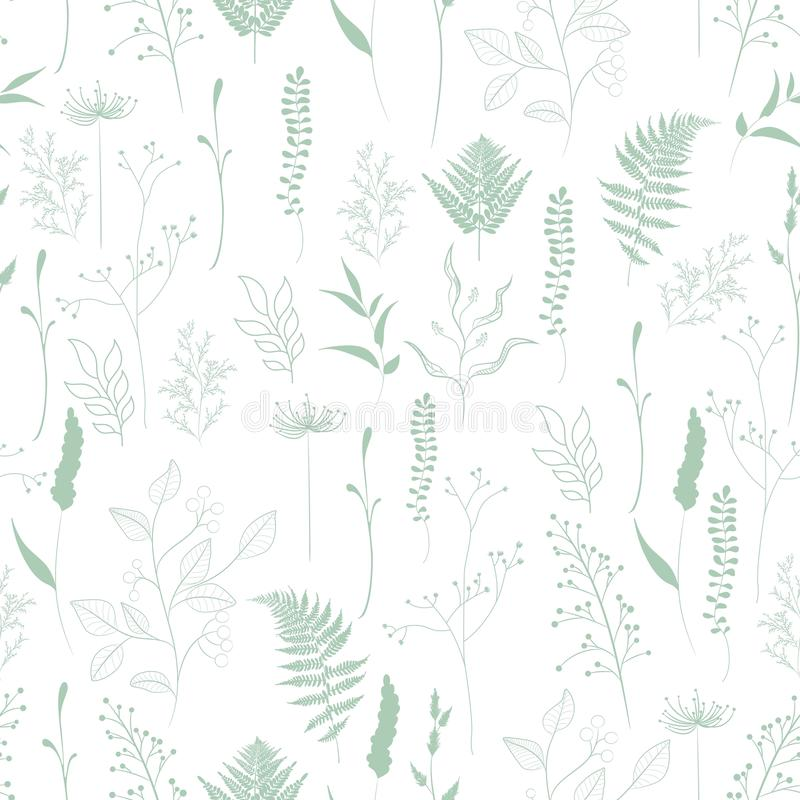 Seamless pattern of fern, different tree, foliage natural branches, green leaves, herbs. Green silhouette on white background stock illustration