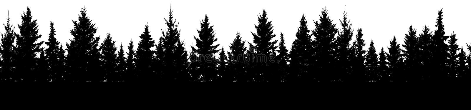 Seamless pattern of fir trees, silhouette of forest. Vector.  stock illustration