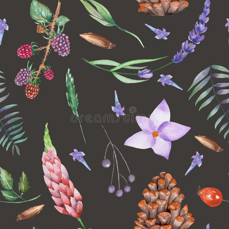 A seamless pattern with a floral ornament of the watercolor forest elements: berries, cones, lavender, wildflowers and branches. A seamless pattern with a floral stock illustration