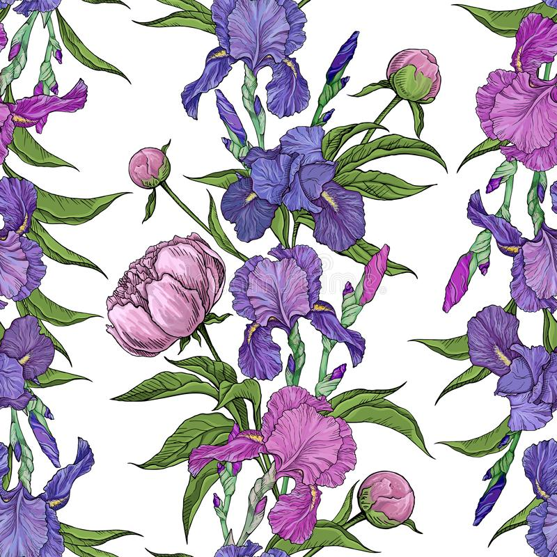 Seamless pattern flowers peonies and irises vector illustration