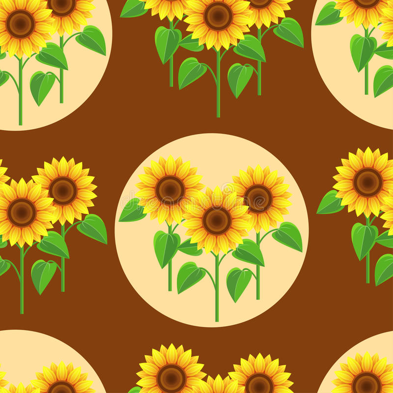 Seamless pattern with flowers sunflowers and circles vector illustration