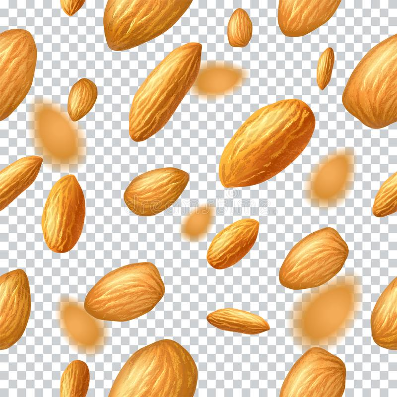 Seamless pattern with flying almonds on transparent background. Realistic illustration. Template for print and packa stock illustration