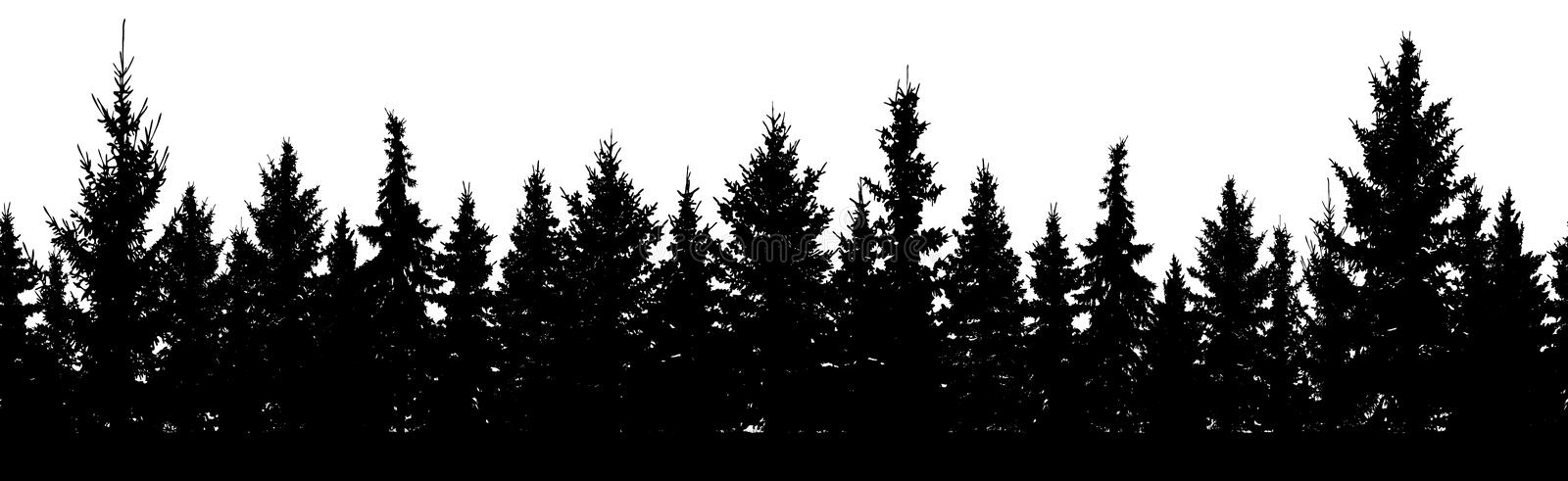 Seamless pattern. Forest of Christmas fir trees silhouette. Coniferous spruce stock illustration