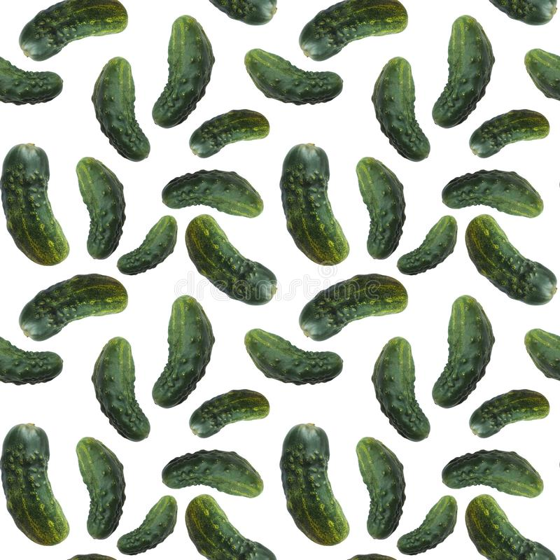 Seamless pattern of fresh green cucumbers, organic food isolated on white background. stock photo