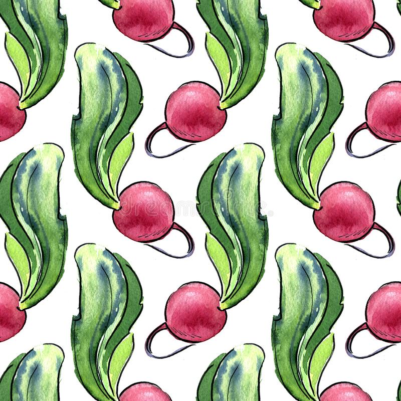 Seamless pattern of fresh radishes with tops. Hand drawn watercolor illustration on white background. Seamless pattern of fresh radishes with tops. Hand drawn stock illustration