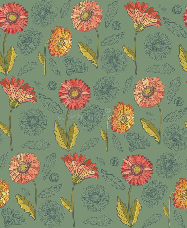 Seamless pattern of gerbera flowers. Vintage style. Hand-drawn Botanical vector illustration. Good design for printing, postcard. Wallpaper, packaging stock illustration