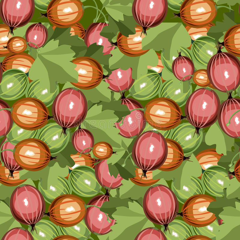 Seamless Pattern Gooseberry Stock Images