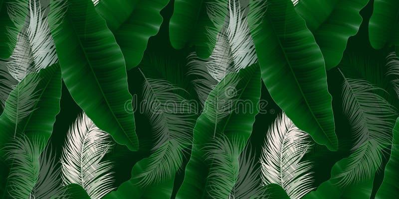 Seamless pattern, green Asplenium nidus, Birds Nest Fern and palm leaves on dark green royalty free illustration