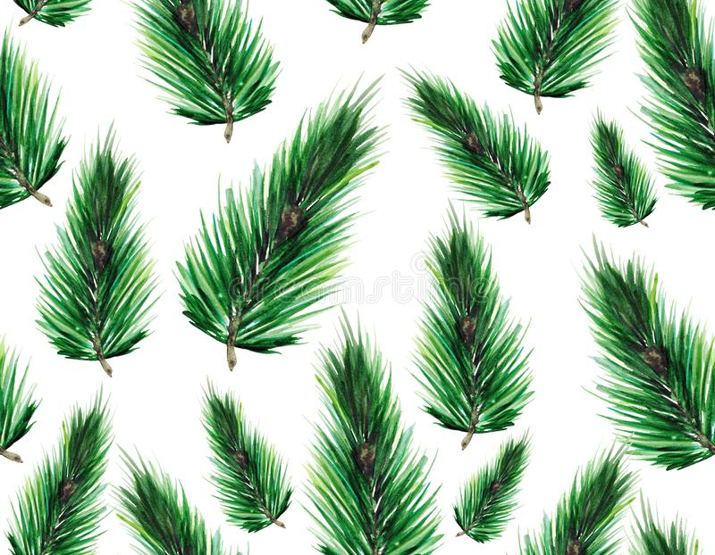 Seamless pattern with green fir branches. Christmas background for textiles, Wallpaper and packaging. royalty free stock images