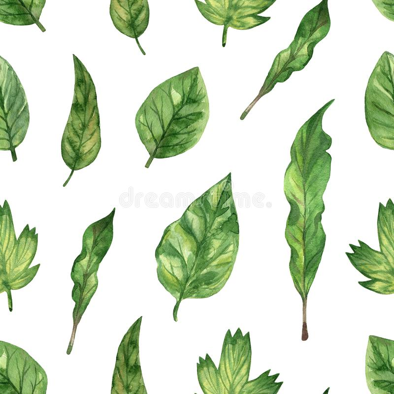 Seamless pattern with green fresh leaf. Watercolor hand drawn illustration royalty free illustration