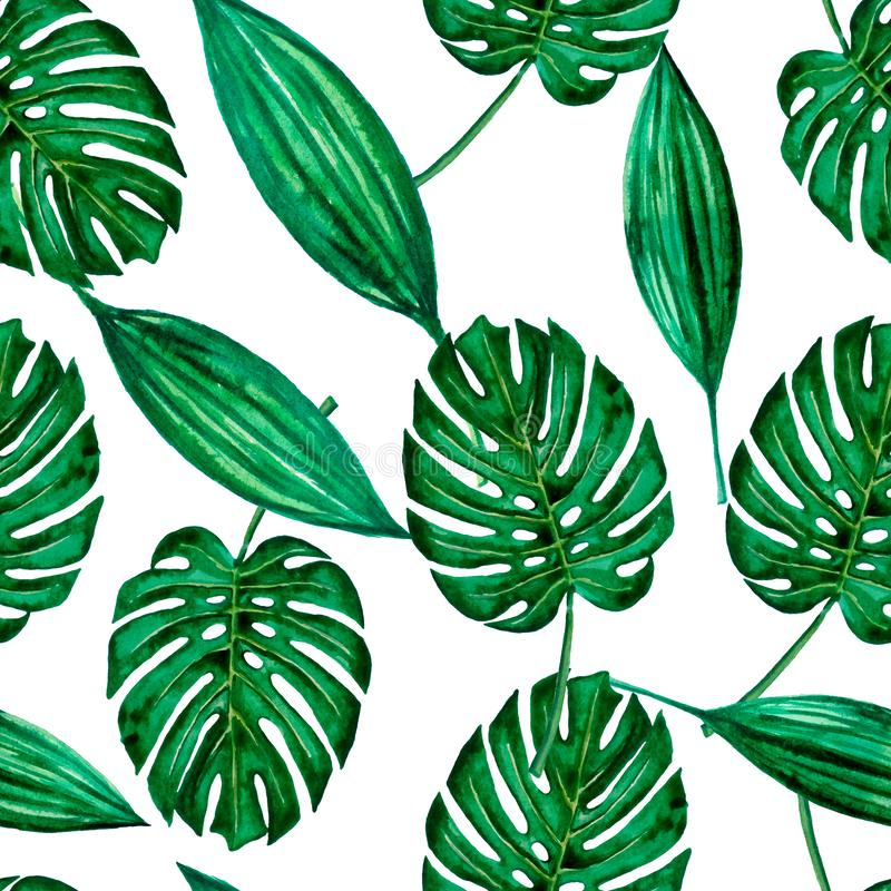 Seamless pattern green watercolor leaves. royalty free illustration
