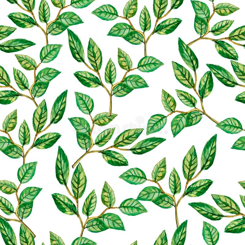 Seamless pattern green watercolor leaves. vector illustration