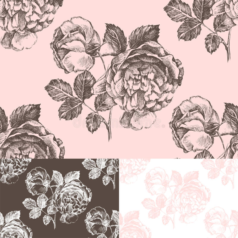 Download Seamless Pattern With Hand Drawn Roses Stock Vector - Image: 43742434
