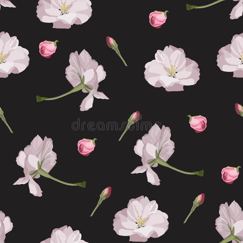 Seamless pattern with hand drawn sakura flowers. royalty free illustration