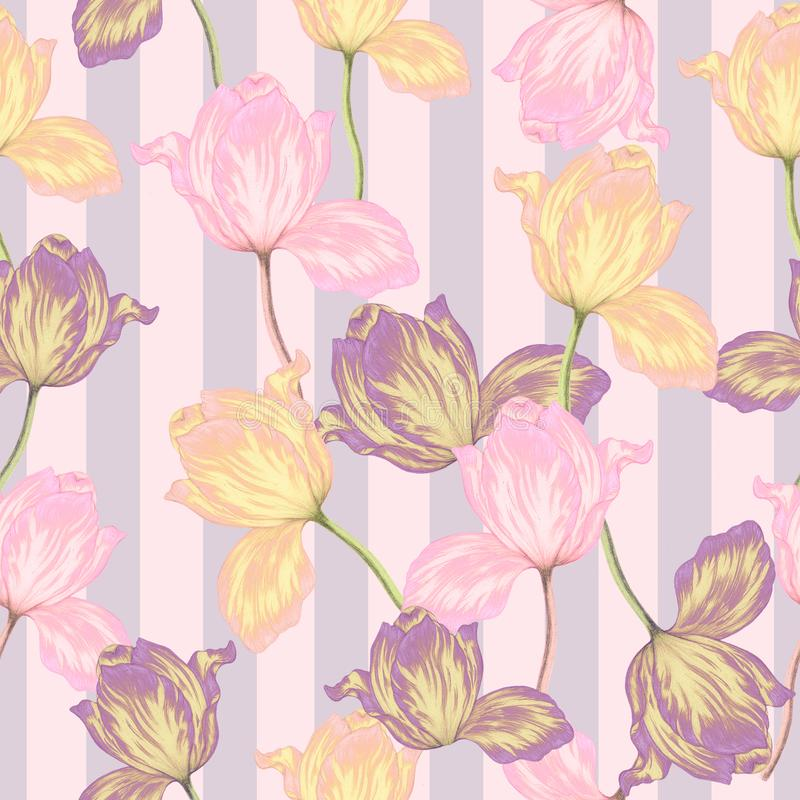 Seamless pattern of hand drawn tulips. On stripes vector illustration