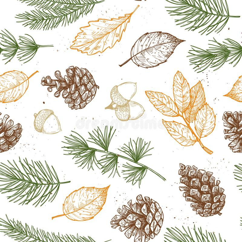 Seamless pattern. Hand drawn vector illustrations - Forest Autumn collection. Spruce branches, acorns, pine cones, fall leaves. D vector illustration