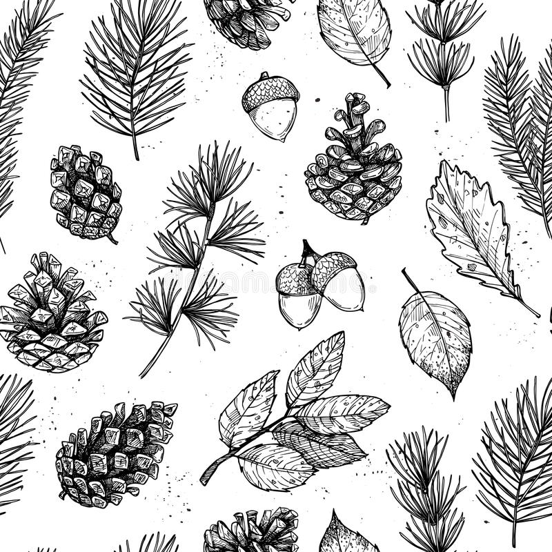Seamless pattern. Hand drawn vector illustrations - Forest Autumn collection. Spruce branches, acorns, pine cones, fall leaves. D. Esign elements for invitations stock illustration