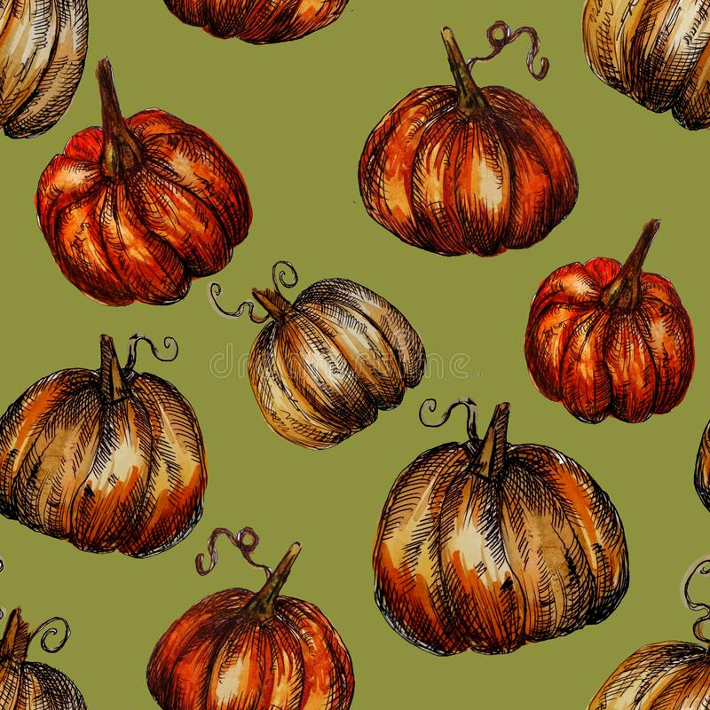 Seamless pattern hand-drawn watercolor pumpkins. It is the perfect for Thanksgiving Day, Halloween, greeting card. Print of green. Background, autumn, october royalty free illustration