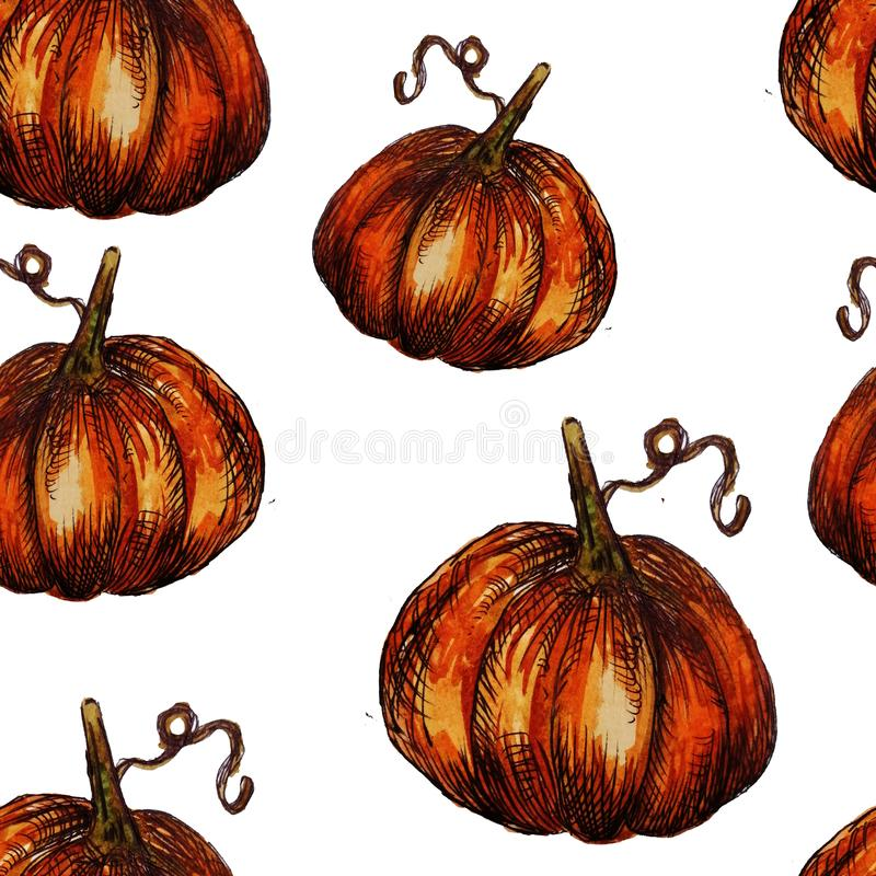 Seamless pattern hand-drawn watercolor pumpkins. It is the perfect for Thanksgiving Day, Halloween, greeting card. Print of white. Background, autumn, october royalty free illustration