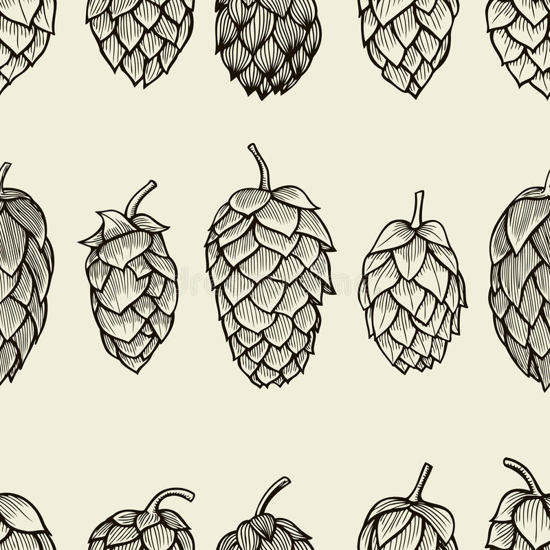 Seamless pattern with hops. Beer background. Vector illustration vector illustration