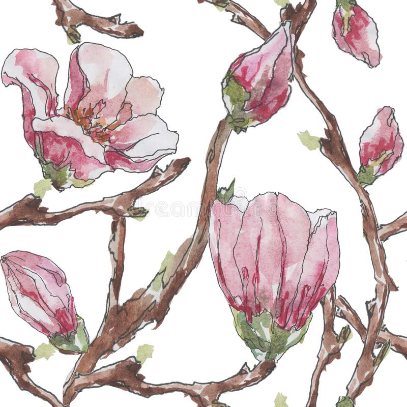 Seamless pattern with the image of branches and flowers of magnolia on a white background. Watercolor stock illustration
