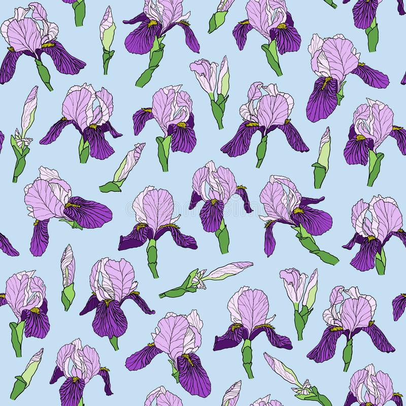 Seamless pattern of iris flowers in a linear style stock illustration