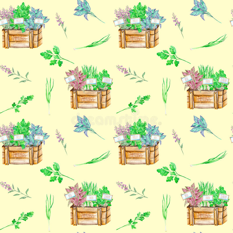 Seamless pattern with the isolated watercolor spices spicy herbs in a wood boxes. Onion green, parsley, cilantro, sage and basil, painted on a light yellow royalty free illustration