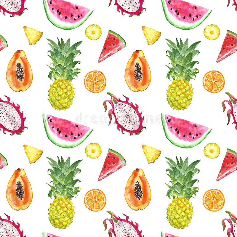Seamless pattern with isolated watercolor summer exotic fruits - watermelon slice, pineapple, papaya, dragon fruit stock photography