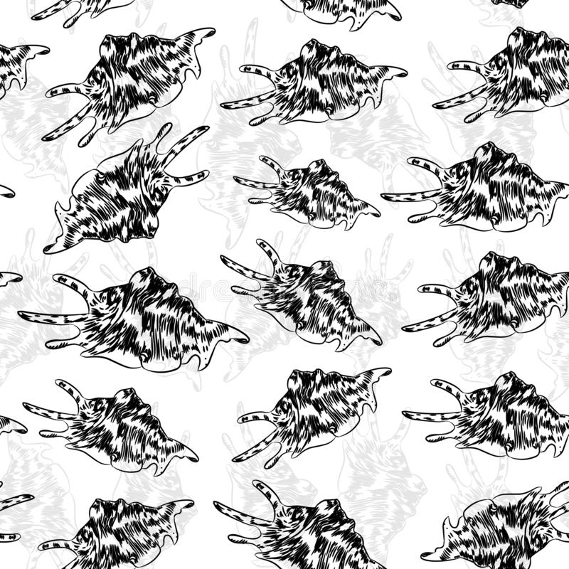 Seamless pattern Lambis spider conch Chicoreus aculeatus, large sea snail Unique shells, molluscs Gastropoda. Sketch black contour. On white background. Vector vector illustration