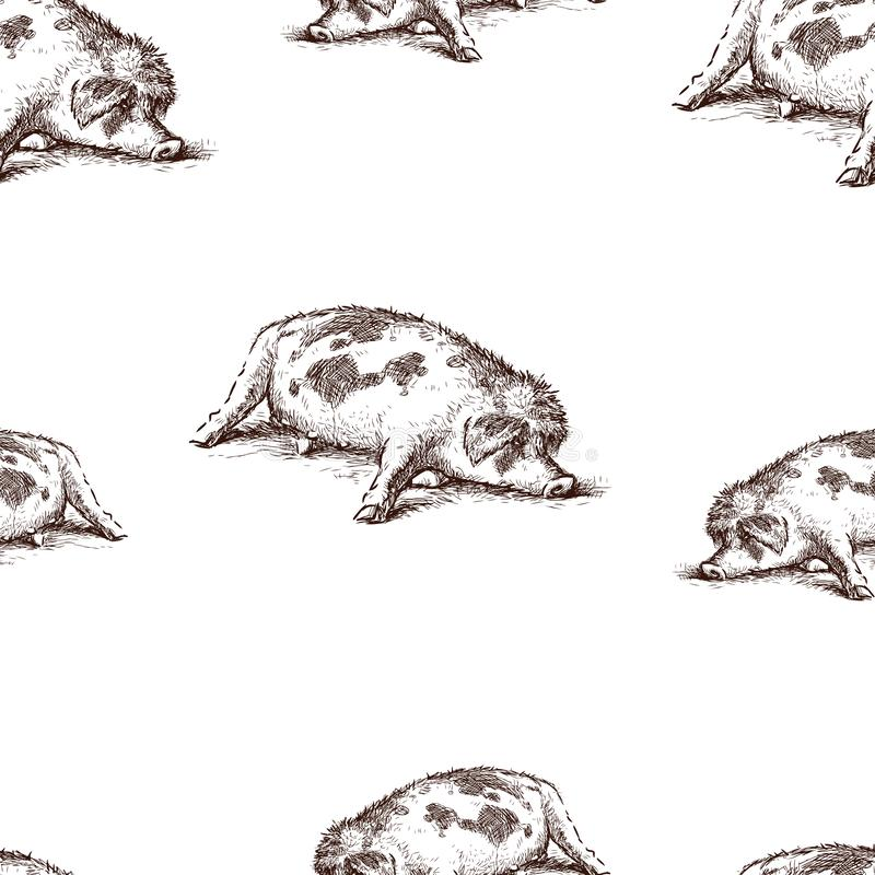 Seamless pattern of a lazy sleeping pig stock illustration